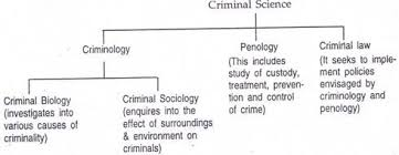 inter relation between criminology penology and criminal law essay it is generally said that criminal law is an index of civilisation because it is sensitive to the changes in social structure and reflects mental fibre of a