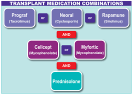Diet Chart For Kidney Transplant Patients Post Transplant Medication Beaumont Hospital