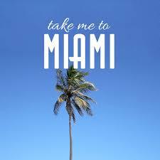 Miami Quotes Stunning 48 Miami Quotes QuotePrism
