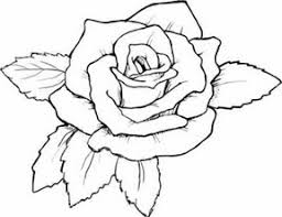 Free Coloring Pages For Adults Roses The Color Panda