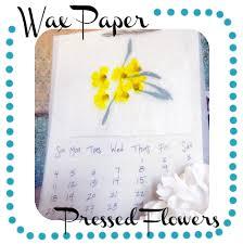 Wax Paper Flower Wax Paper Pressed Flowers