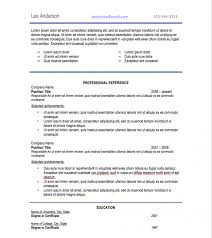 Resume Font Type And Size Kays Makehauk Regarding Professional