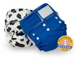Happy Heiny One Size Pocket Diaper