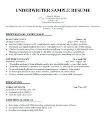 Make A Resume For Free Online Fascinating Create Resume Online My Resume Online Best Free Online Resume