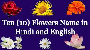 ten flowers name hindi english archives