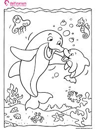 Quiver Kleurplaten Dolfijnen Dolfinarium Kleurplaten Animaatjes Nl