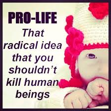 Pro Life Quotes Impressive Pro Life Quotes Pro Life Sayings Pro Life Picture Quotes