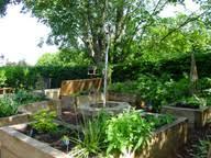 Small Picture Edible garden design urban orchard design kitchen gardens