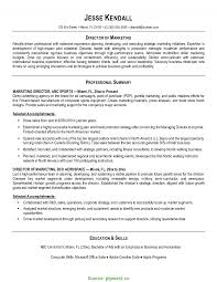 Perfect Resume Real Estate Pattern Documentation Template Example