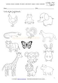 Animals Worksheet - Activity sheet Circle 4