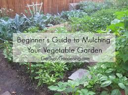 garden mulcher. Beginners Guide To Mulching Your Vegetable Garden Mulcher