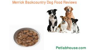 Merrick Dog Food Feeding Chart Top 5 Merrick Backcountry Dog Food Reviews Guideline