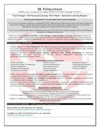 Sample Resume For Sap Sd Consultant Elegant Sap Sample Resumes