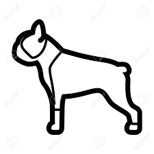 Vector Boston Terrier Dog Icon Isolated ...