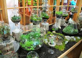 Small Picture Indoor Herb Garden Terrarium Gardening Ideas