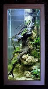 Amazing Aquarium Design Amazing Aquarium Design Ideas For Indoor Decor 1 Decomg