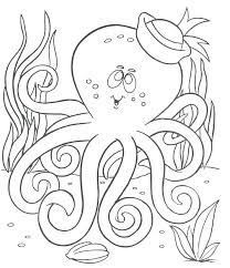 Ocean Animal Coloring Pages Or Animal Habitat Coloring Pages Ocean