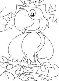 Small Picture Kiwi Coloring Page Download Free Kiwi Coloring Page for kids