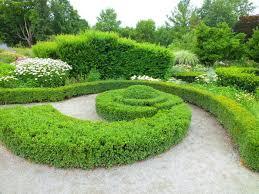 cutting garden design plans cutting flower garden design 15 fast growing flowers for a cutting