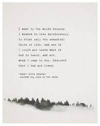 best transcendentalism quotes ideas the woods  henry david thoreau quote walden or life in by riverwaystudios