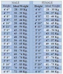 Ideal Height And Weight Chart Powcast Sports