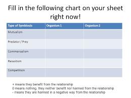 19 Explanatory Druid Symbiosis Chart
