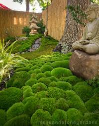 Small Picture Best 25 Japanese rock garden ideas on Pinterest Japanese garden