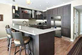 contemporary kitchens with dark cabinets. Small Kitchen Dark Cabinets Contemporary With Peninsula And Mini Pendant Lights Decorating Kitchens