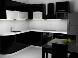 Minimalist Kitchen With Black Cabinets