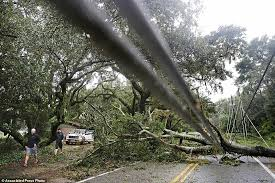 Image result for road littered with debris impassable