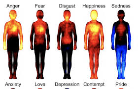 Mapping Emotions In The Body A Finnish Neuroscience Study