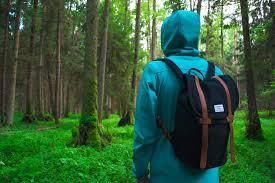 フリー写真] リュックを背負って森の中に入る人物でアハ体験 - GAHAG | 著作権フリー写真・イラスト素材集