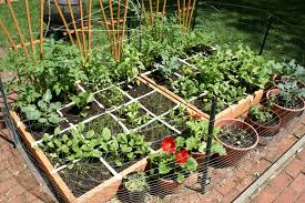 vegetable garden designs square foot