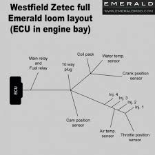 full westfield zetec wiring harness (loom) for emerald ecu Trailer Wiring Harness westfield zetec full harness (loom) for emerald aftermarket standalone ecu (ecu in engine