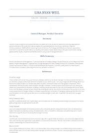 General Resume Outline Vice President And General Manager Resume Samples And