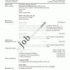 Sample Job Resume Examples Interior Design Resume Template Best