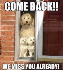 e back we miss you already