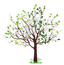 bare apple tree clipart. spring tree with snowdrops png clipart picture bare apple
