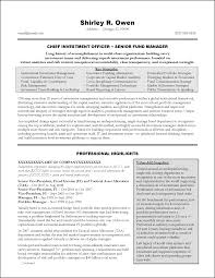 Marketing Executive Resume Examples Executive Resume Examples Sample Executive Resume Template 21