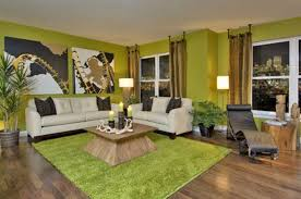 Green Decorating Ideas Living Rooms Home Design - Decorating livingroom