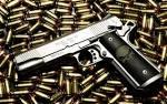 6 Pro-Gun Videos...