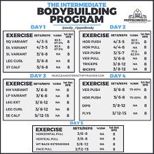 interate bodybuilding program