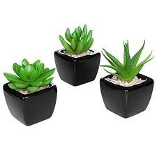 Set of 3 Modern Home Decor Mini Succulent Artificial Plants with Square  Black Ceramic Pots -