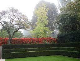 inside the gardens of luciano giubbilei