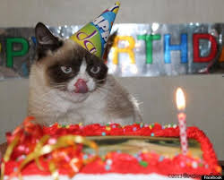 grumpy cat i had a birthday once. Delighful Grumpy Tard Grumpy Cat Birthday Inside Grumpy Cat I Had A Birthday Once T