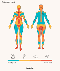 Nerve Chart Leg Tattoo Pain Chart Where It Hurts Most And Least And More