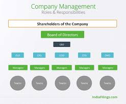 Company Management Structure Roles Responsibilities