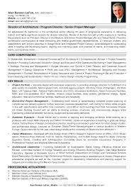 sample cv vice president s professional resume cover letter sample cv vice president s senior vice president resume sample after vice president it resume truworkco