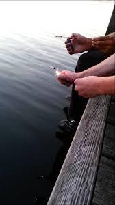 lighting off bottle rockets underwater