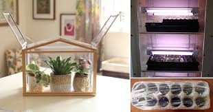 15 diy mini indoor greenhouse ideas for winter early spring